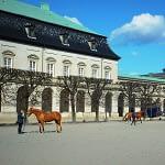 Horses Outside Parliament